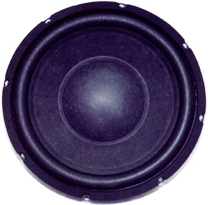 RS Competition Subwoofer